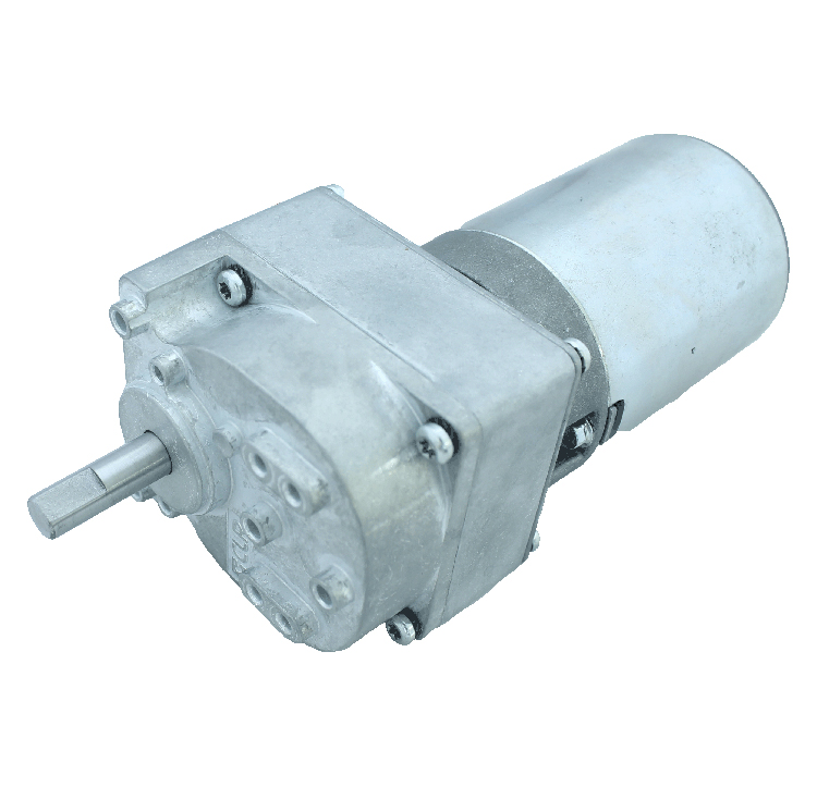 Motorreductor DC 24V 21rpm