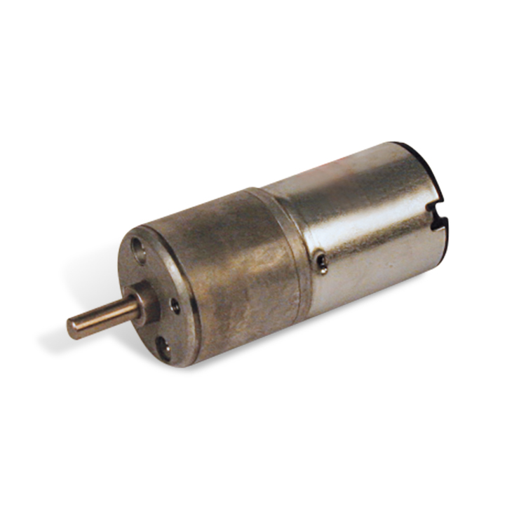 Motorreductor DC 12V 80rpm